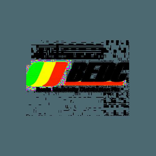 Benin Electricity Distribution Company (BEDC)